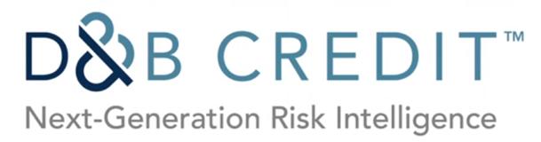 D&B credit reporting agency